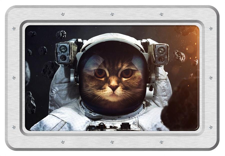 Samoljepljiva dekoracija Mačka astronaut SM-3443, dimenzije 42,5 x 65 cm - Naljepnice za zid