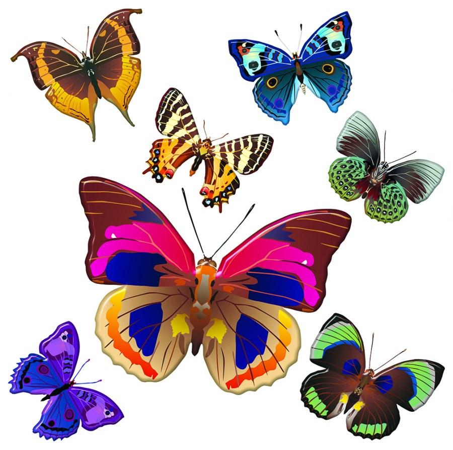 Samoljepljiva dekoracija Šareni leptiri SS-3854, 30x30 cm - Naljepnice za zid
