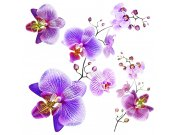 Samoljepljiva dekoracija Orhideja SS-3859, 30x30 cm Naljepnice za zid
