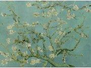 Flis foto tapeta za zid 200330 | 400 x 280 cm | Van Gogh | Ljepilo besplatno BN International