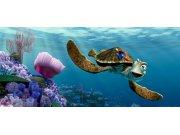 Flis foto tapeta AG Nemo i Kornjača FTDNH-5312 | 202x90 cm Foto tapete