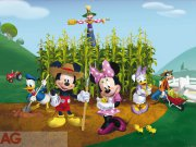 Flis foto tapeta AG Mickey & Minnie FTDNXXL-5029 | 360x270 cm Foto tapete
