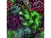 Luksuzna flis foto tapeta Smart Art Aspiration 46801 | 318 x 340 cm | Ljepilo besplatno Foto tapete