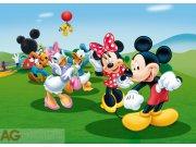 Flis foto tapeta AG Mickey i prijatelji FTDNM-5212 | 160x110 cm Foto tapete