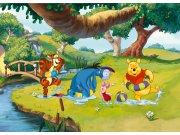 Flis foto tapeta AG Winnie Pooh FTDNM-5215 | 160x110 cm Foto tapete