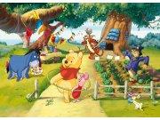 Flis foto tapeta AG Winnie Pooh rođendan FTDNM-5216 | 160x110 cm Foto tapete