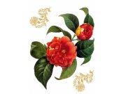 Naljepnica za zid Crveni cvijet F-0457, 85x65 cm Naljepnice za zid