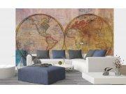 Flis foto tapeta Apstraktna karta svijeta globus | 375x250 cm Foto tapete