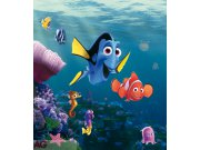 Flis foto tapeta AG Nemo & Dory FTDNXL-5132 | 180x202 cm Foto tapete