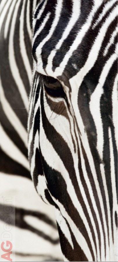 Flis foto tapeta AG Zebra FTNV-2853 | 90x202 cm - Foto tapete