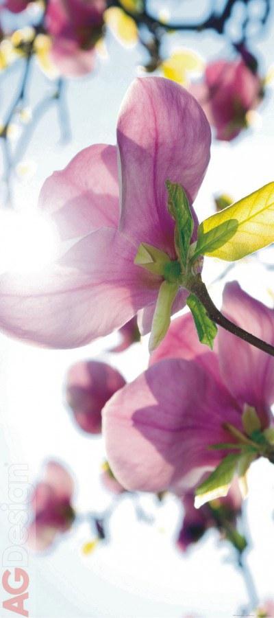 Flis foto tapeta AG Flowers in the Svn FTNV-2873 | 90x202 cm - Foto tapete