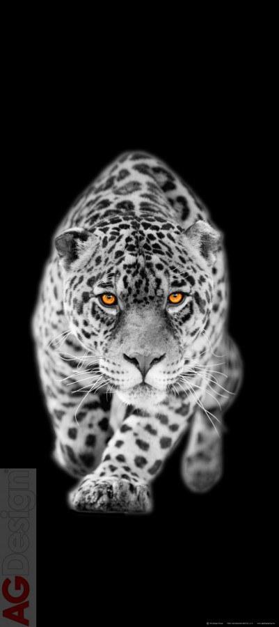 Flis foto tapeta AG Leopard FTNV-2897 | 90x202 cm - Foto tapete