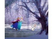 Foto zavjese Snježno kraljevstvo FCSXL-4300, 180 x 160 cm Foto zavjese