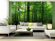 Fototapeta AG Les FTS-1324 | 360x254 cm Fototapety na zeď