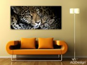 Vliesová fototapeta AG Leopard FTNH-2709 | 202x90 cm Fototapety vliesové - Vliesové fototapety AG