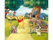 Foto zavjese Winnie the pooh FCSXXL7013, 280 x 245 cm Foto zavjese
