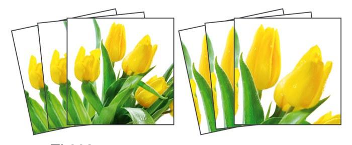Samoljepljiva dekoracija za pločice Tulips TI-008, 15x15 cm - Naljepnice za pločice