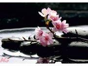Foto tapeta AG Kamenje sa cvijetovima FTS-0185 | 360x254 cm Foto tapete
