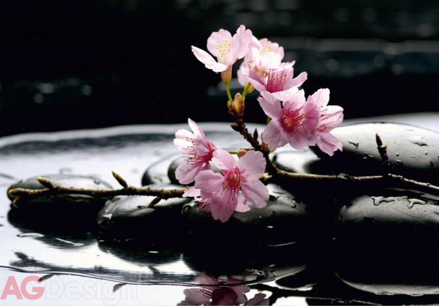 Foto tapeta AG Kamenje sa cvijetovima FTS-0185 | 360x254 cm - Foto tapete